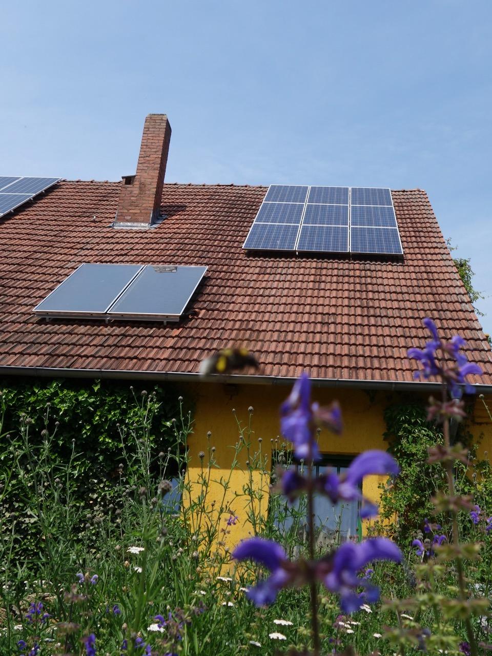Nachhaltigkeit genussvoll leben
